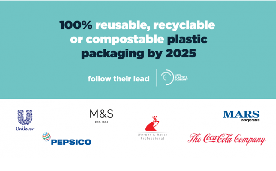 werner mertz professional,100% recycled plastics,100% recycled packaging,Ellen MacArthur Foundation,New Plastics Economy,2025
